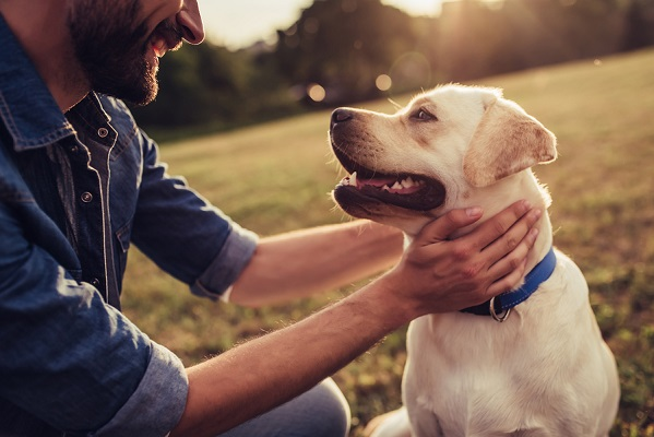 Photo pets and mental health article - 400